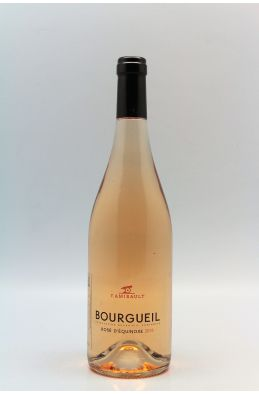 Amirault Bourgueil Equinoxe 2018 rosé