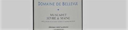 La photo montre une bouteille de vin du domaine Bellevue Jerome Bretaudeau dans la Loire