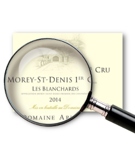 domaine1.png