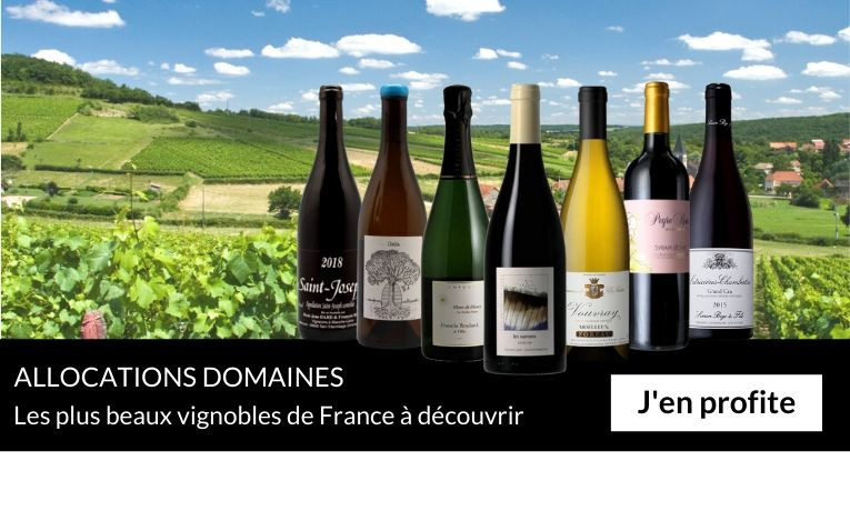 Allocations domaines